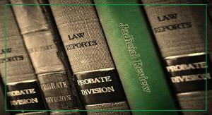 600x325_service_Judicial-Review