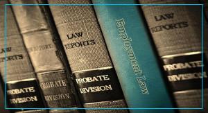 600x325_service_Employment-Law