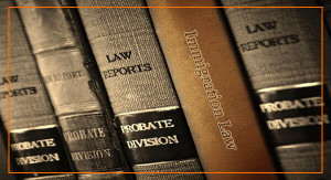 600x325_service_Immigration_Law